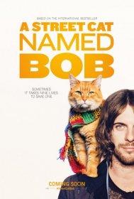 A Street Cat Named Bob - 2016 - Türkçe Dublaj