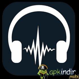 Impulse Music Player Pro