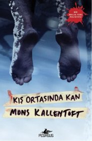 Kış Ortasında Kan - Blood in the middle of winter - Mons Kallentoft